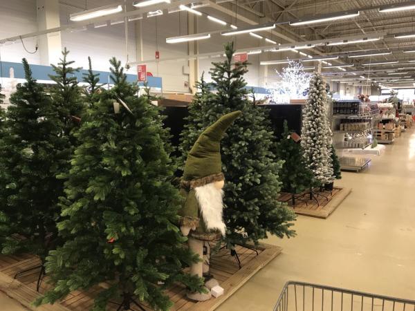 Kerstbomen bij Makro