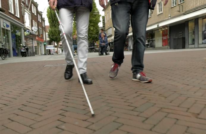 466861 beperkingen gehandicapten