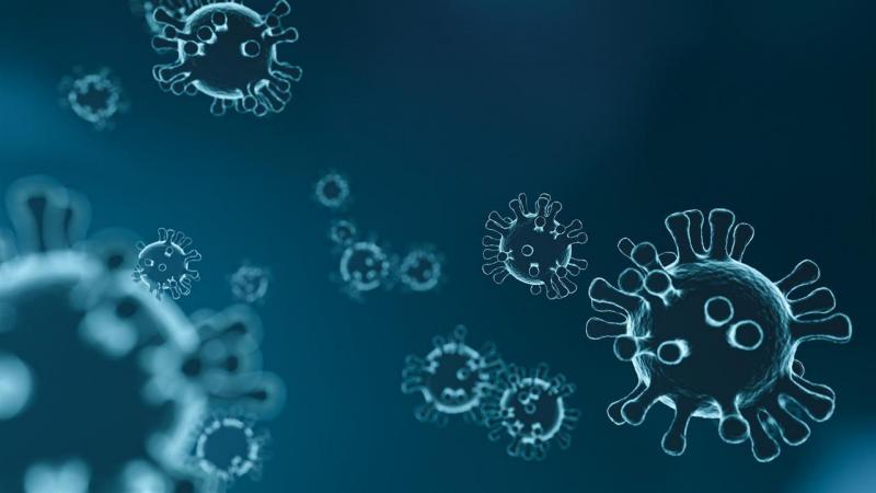 463514 virus 4835301 1920