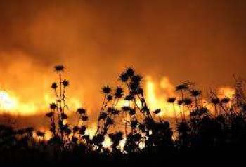 270929 natuurbrand