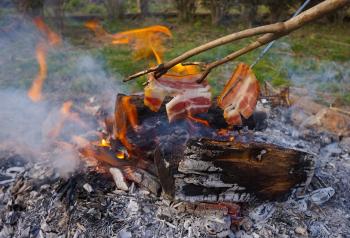 195971 bacon 1249487 960 720