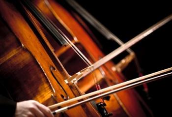 93196 orkest