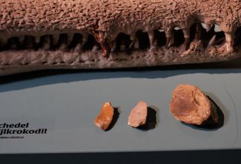Neanderthalergereedschap Ernst Bergboer