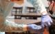 Vaccinatie stockfoto Pixabay